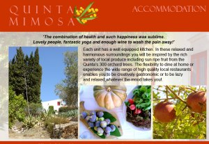 quinta mimosa2